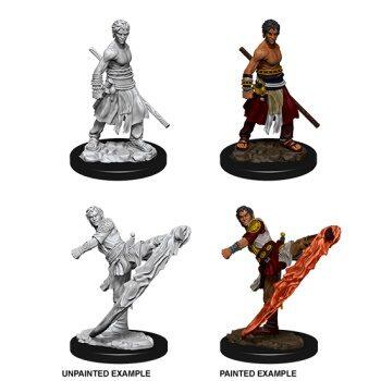 D&D Nolzur's Marvelous Miniatures - Male Half-Elf Monk - med primer på